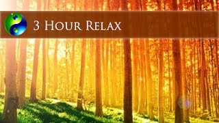 3 Hour New Age Music; Instrumental Music; Relaxing Music; Relaxation Music; Gentle Music 🌅114