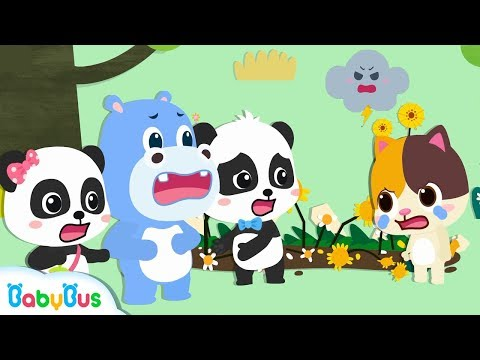 Baby Kitten's Sunflowers are Damaged | Weather in My mind  | Weather Song | Nursery Rhyme | BabyBus