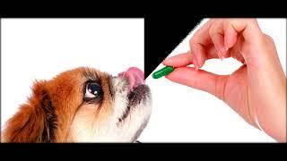 витамин роста для животных