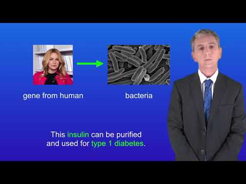 GCSE Science Biology (9-1) Genetic Engineering