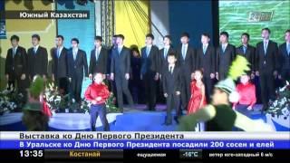 В ЮКО открылась выставка ко Дню Первого Президента