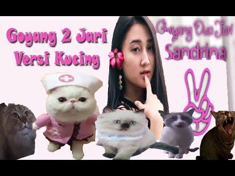 Sandrina - Goyang 2 Jari (VERSI KUCING)