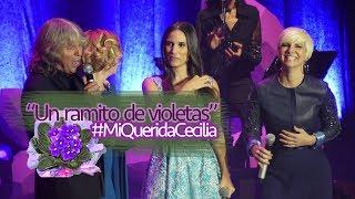 Un ramito de violetas-India Martínez, Pasión Vega, Sole Giménez  y José Mercé [4K] #MiQueridaCecilia