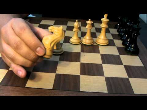 Fierce Knight Chess Set -- The Chess Store -- Review