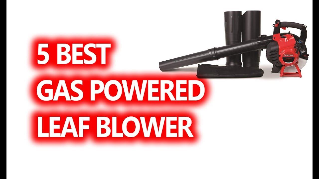 Weed Eater FB25 25cc 2-Cycle Gas 300 CFM 170 MPH Handheld Leaf ...