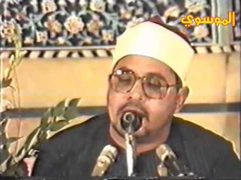 mohamed anwar shehata