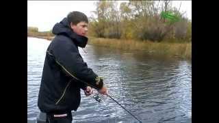 Алексей Шанин. Твичинг на мелководье