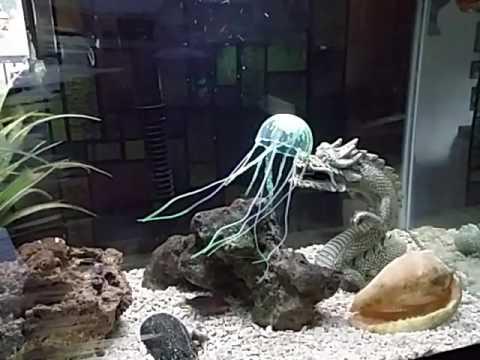 Jellyfish Decoration For My Saltwater Aquarium