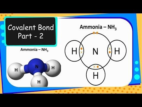 Chemistry – Covalent bond, Bond pair and Lone pair  - Chemical Bonding – Part 4 - English