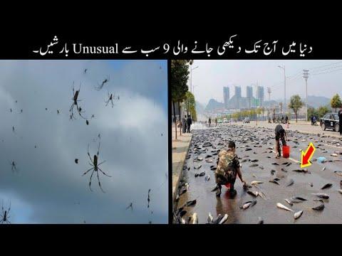 9 Most Unusual Rains Ever Recorded Urdu | دنیا میں ہونے والی انوکھی بارشیں | Haider Tv