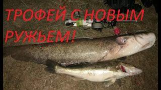 Охота с новым ружьем Чуть не уплыли часы Суунто Сом 13кг на Подводная Охота На Сома и Судака