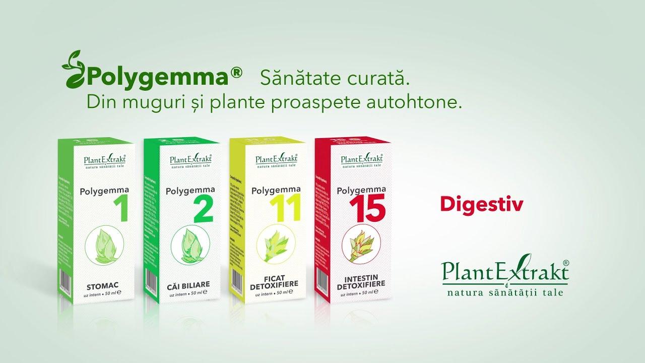 polygemma detoxifiere