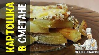 Картошка в сметане: как вкусно приготовить картошку