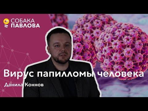 Вирус папилломы человека -Данила Коннов//рак шейки матки, вакцинация от ВПЧ, девятивалентная вакцина