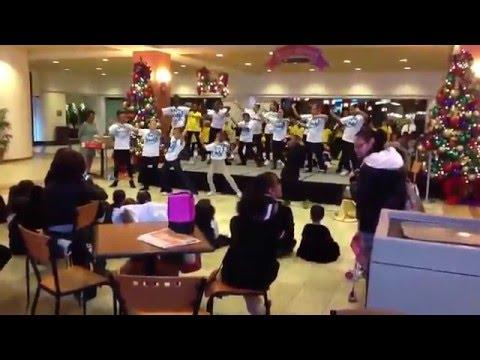 Rebecca M Johnson Elementary School of Performing Arts
