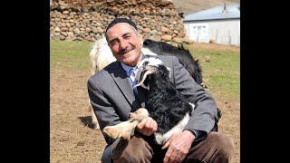 Mans Not Hot Feat İlhan Orak(Bingöllü Çoban) / 2 tane