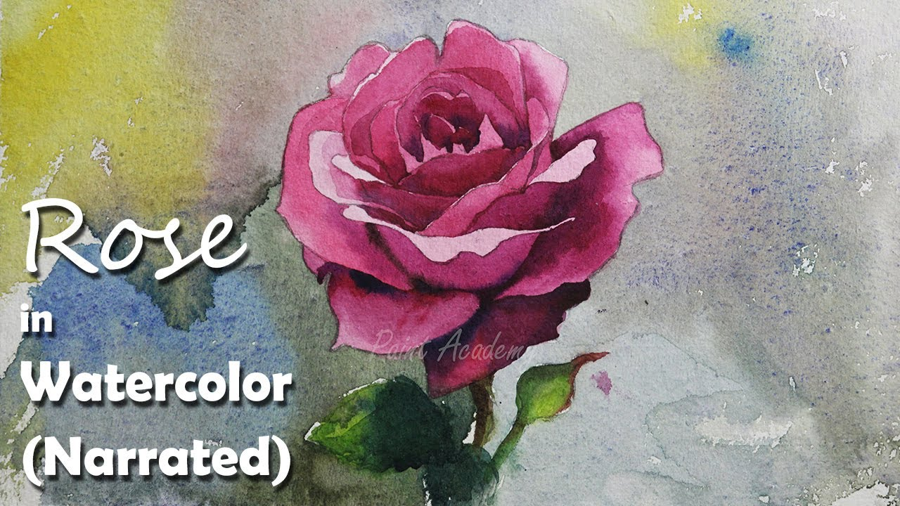 How to paint a rose in watercolor narrated video youtube for How to paint a rose in watercolour