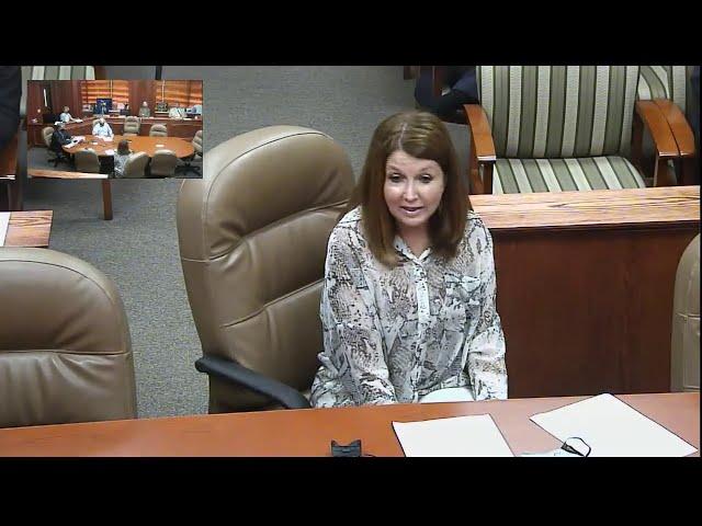 Commissioners Court 09/08/2020 part 2