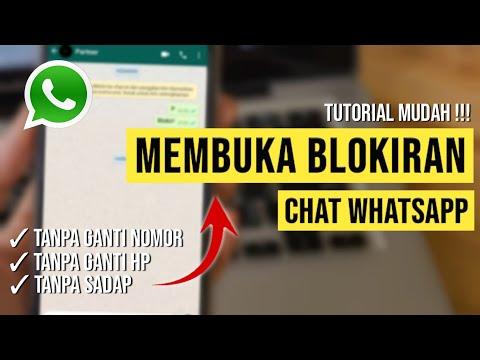 cara-buka-blokir-wa-orang-yang-memblokir-kita-tanpa-ganti-nomor-dan-aplikasi-|-#tutorialwhatsapp