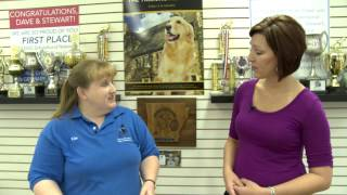 How To Introduce A New Dog To Your Family With Kennelwood Pet Resorts Trainer, Kim Hyde