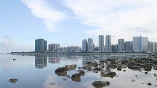 South China's Zhuhai City strengthens IPR protection to boost growth