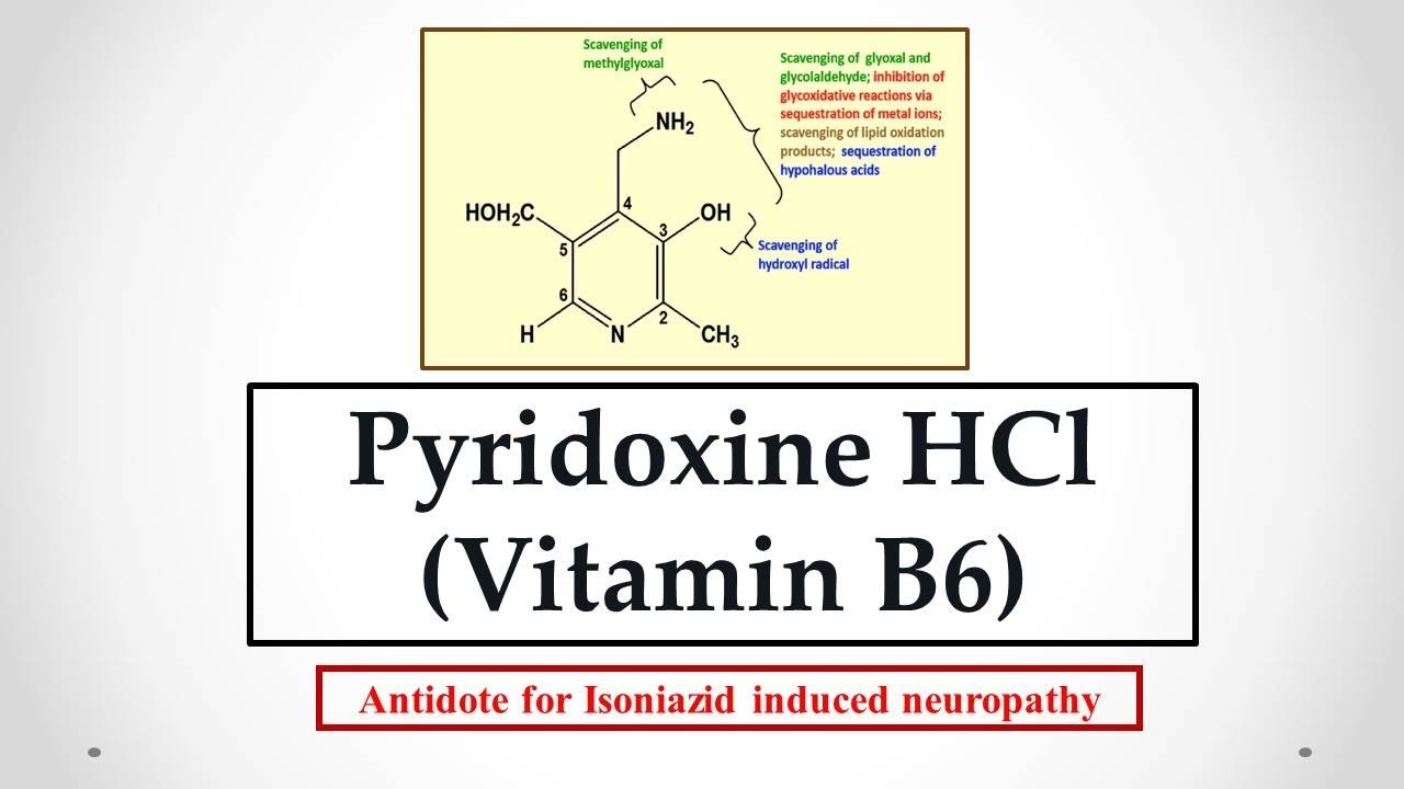 Pyridoxine HCl (Vitamin B6) uses, antidote effects, mechanism, indications  and ADR's ☠