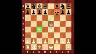 Chess for Beginners. How to Play with the King. Eugene Grinis. Chess