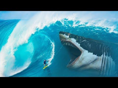 Was, Wenn Megalodon-Haie Nie Ausgestorben Wären?