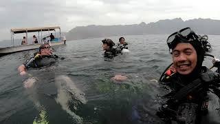 Explore the Amazing Underwater World in Musandam Oman.