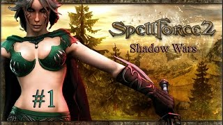 видео SpellForce 2: Shadow Wars