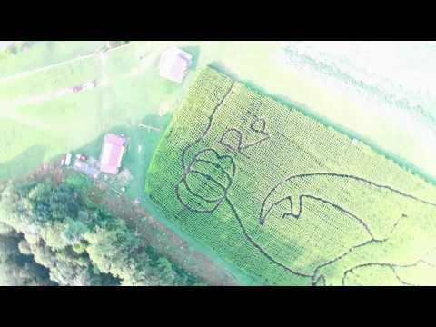 Blue Ridge Pumpkins LLC TREX Corn Maze In Fancy Gap, VA