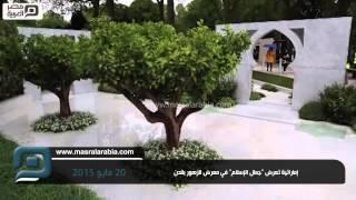 مصر العربية |  إماراتية تعرض