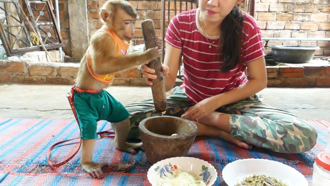 Wow Dodo Help Mom Use Motar And Pestle To Make Ingredient For Cook