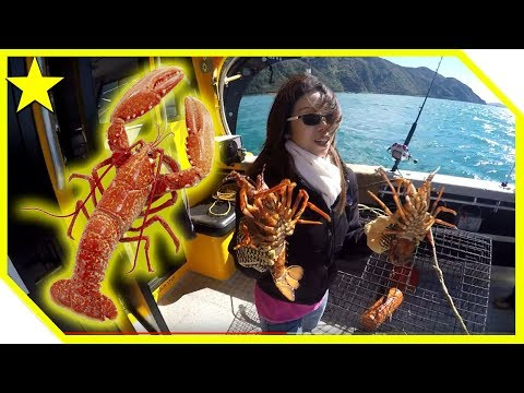 New Zealand Fishing - Crayfish (Kaikoura)