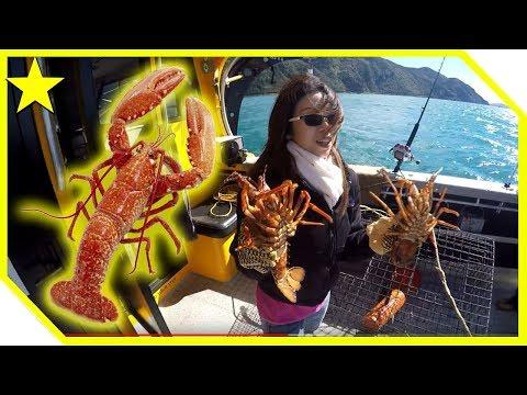New Zealand Fishing - Crayfish (Kaikoura)