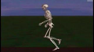 Comprendre la réparation osseuse / Hervé Petite