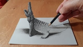 Trick Art Drawing 3D Crocodile, Visual Illusion