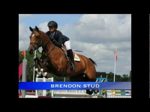 British Showjumping 2011 Breeder Award.avi