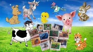 Как Говорят Животные Развивающее Видео Для Малышей