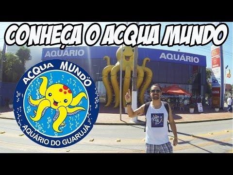 Conheça o Acqua Mundo - Aquário de Guarujá (SP)