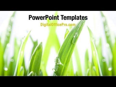 green grass powerpoint template backgrounds digitalofficepro 09221w