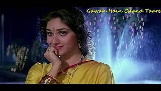 Gawah Hain Chaand Tare   Damini movie   Rishi Kapoor   Meenakshi Seshadri   Kumar Sanu   Alka Yagnik