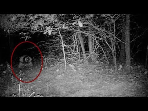 KAMERALARA YAKALANAN CİN GÖRÜNTÜLERİ ( korkunç Video )