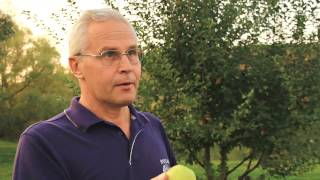 Уроки гаражного виноделия: вино из яблок - Сидр