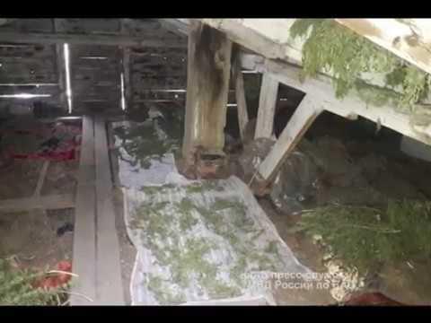 Крупную партию наркотиков изъяли у жителя Ленинского района ЕАО(РИА Биробиджан)