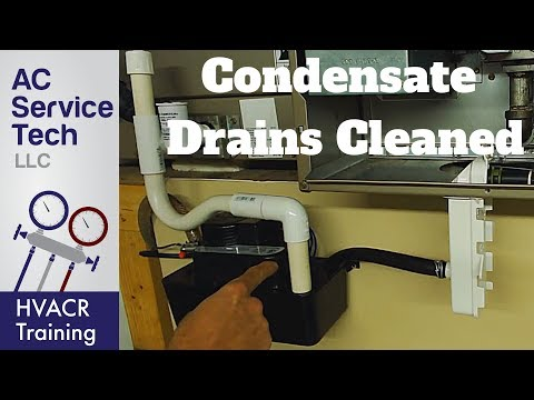 Condensate Drain Traps & Lines Cleaned on AC and Gas Furnace!