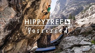 HippyTree / Possessed