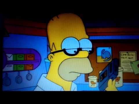 Homer Radio