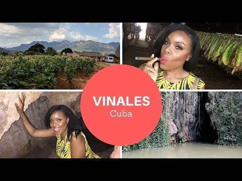 Day Trip to VINALES (3 Hours from Havana) | Cuba Travel Vlog (Part 2)