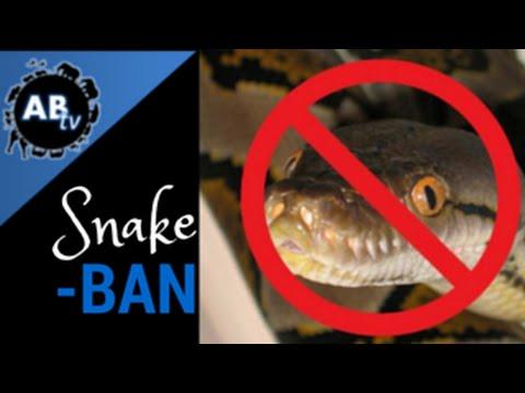 Snake Ban : SnakeBytesTV
